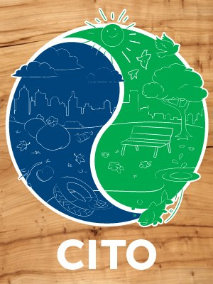CITO cares blog