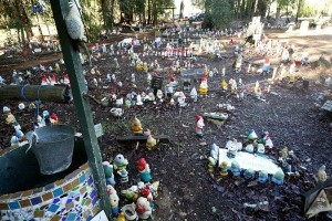Gnomes EVERYWHERE! Photo by geocacher CassidyFamily
