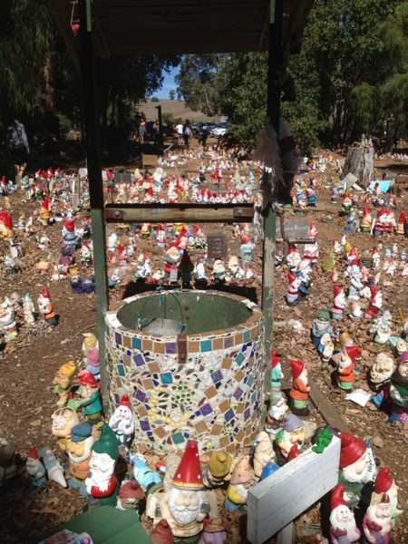 Well, that's a lot of gnomes. (See what I did there?) Photo by geocacher Wandaley
