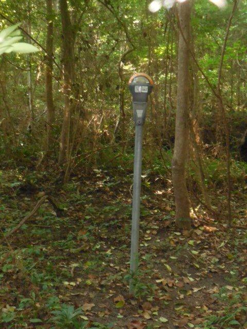 Walking up to this in the middle of the woods may be a bit confusing. Photo courtesy of Tallahassee-Lassie