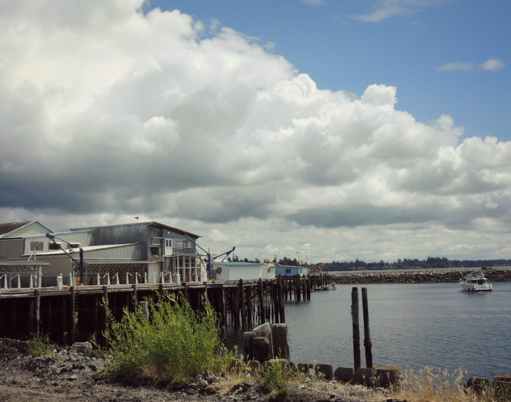 You might think this is an ordinary pier in Blaine, WA, but GC2VW16 is nearby.