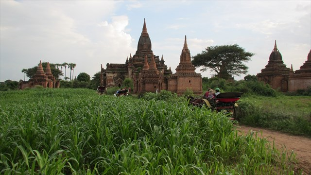 Along the road in Bagan. Photo by geocacher cachecarrie