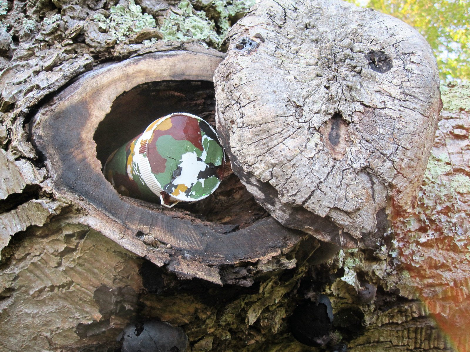 geocaching caches