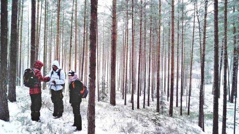 Wintercaching