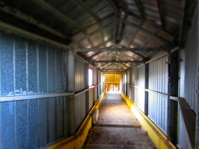 One of the many empty corridors. Photo by snoopyschiri