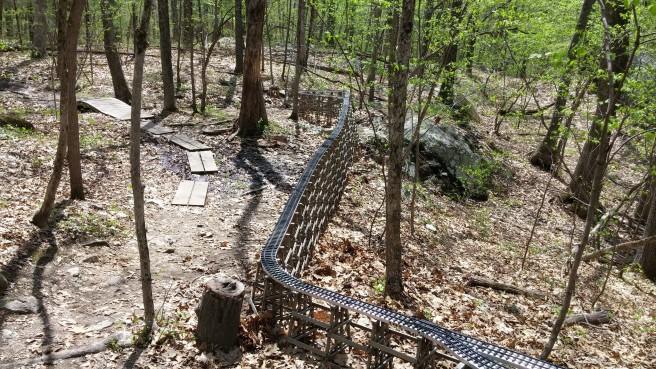 Rails wind snake-like through the woods.
