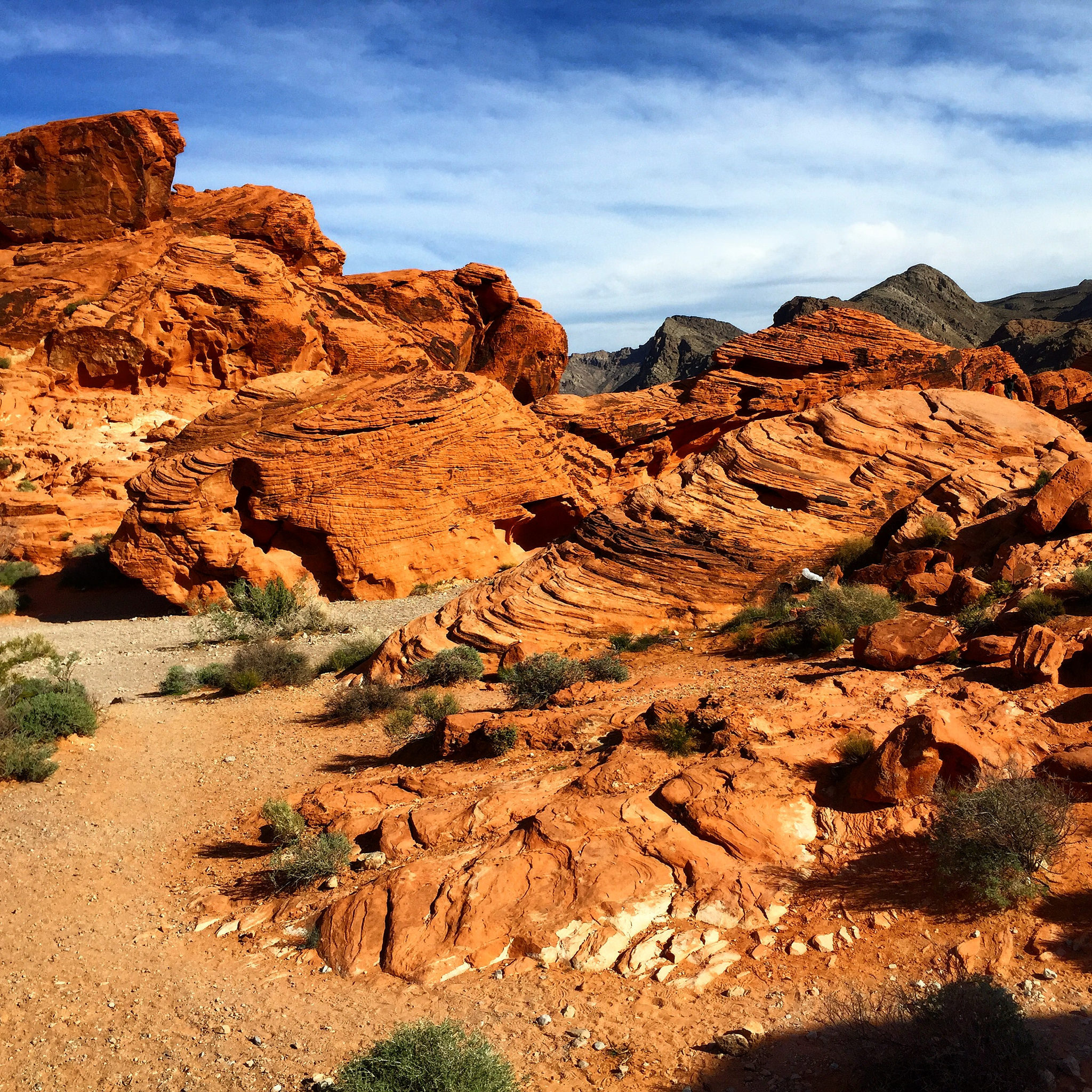 In the Valley of Fire State Park (GC3AQRC). Photo by Love.
