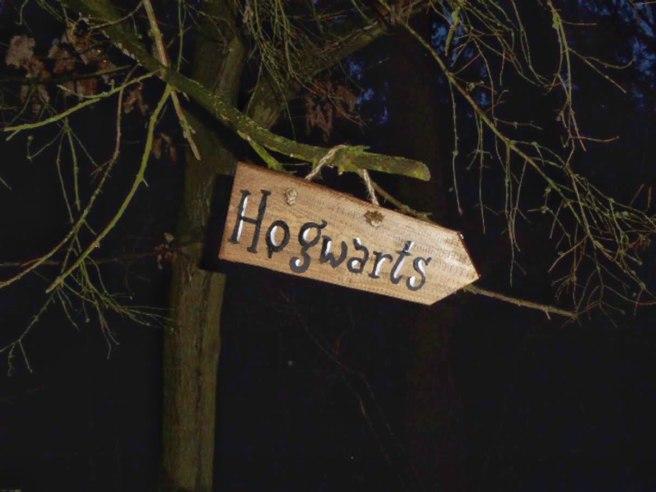 Harry Potters Abenteuer — Geocache of the week