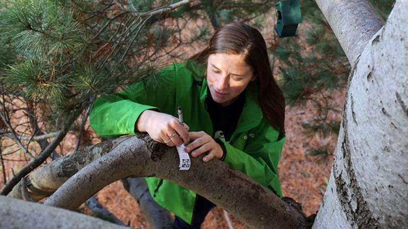 Kletterausrüstung Geocaching : Eine lesezeichenliste zum lieben u2013 official blog