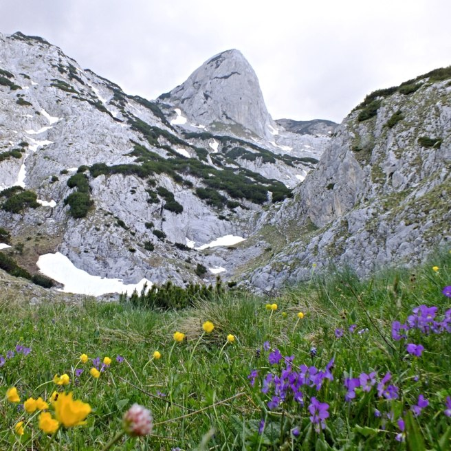 Gorgeous Durmitor National Park