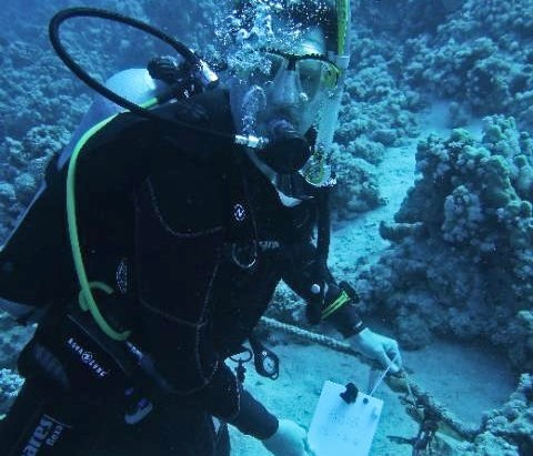 Scuba diving and geocaching